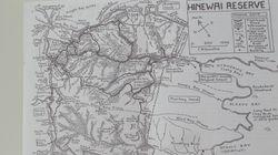 Hinewai Reverve