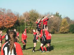 DSHA Rugby over Northshore 83-0 Oct 16-10