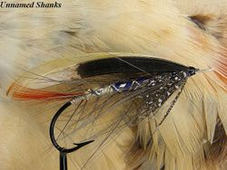 Unnamed Shanks fly