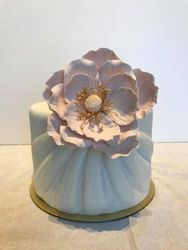 Drape Cake