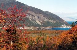 Fall Colours and Lark Harbour