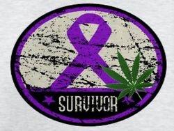 E Survivor