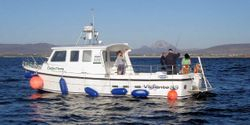 Kincasslagh Chartered Fishing