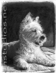 Wrigley Westie Pet Portrait Commission