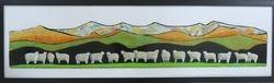 Seventeen Ewes
