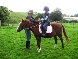 Learning to hold the reins - great natural riding position