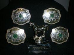 4-H Award buckels
