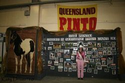 Pinto display in Horse Breeds Expo