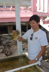 Our guide introduces us to Sally the 9-year old tame conch