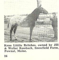 Keno Little Britches