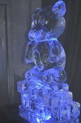 Teddy Bear with Color Light