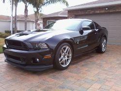 Michael B.--------Mustang Cobra
