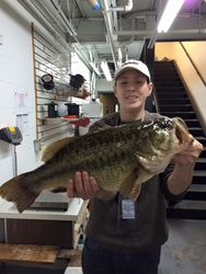 New Delaware State Record Bass