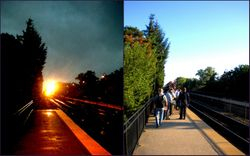Same time, same place, same train, a day apart