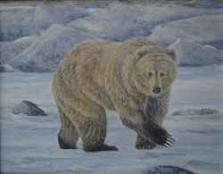"On the Move - Grizzly Bear (8 by 10"" acrylic on masonite)"