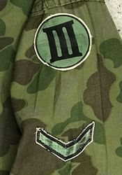 ARVN III Corps. Private: