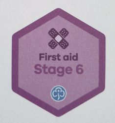 First Aid Stage 6 Skill Builder