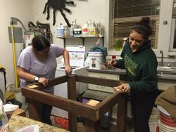 Erin and Shar sanding the red panda bed