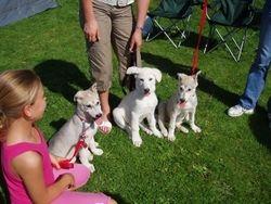 Saskia, Otto and Anya