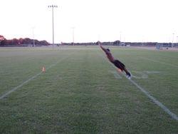 Broad jump 2