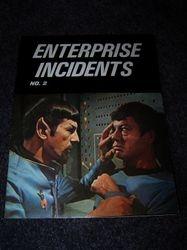 Enterprise Incidents Issue No. 2
