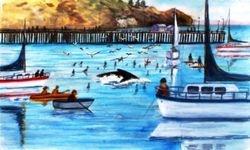 Whales at Avila Beach