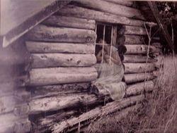 Log Cabin Memories