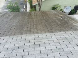 Shingle Roof Cleaning