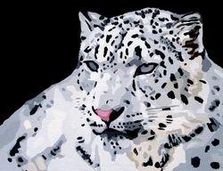 RANSCHAN - 'The Snow Panther'