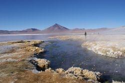 Altiplano, Bolivia 14
