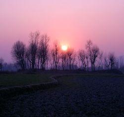 Wayil Sunset