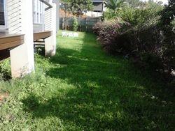 Side Yard Before