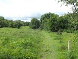 Llynclys Common
