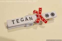 Decorated Pegs