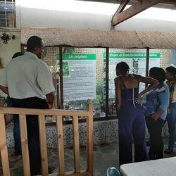 Visite sur site : la maniocrie de Capesterre