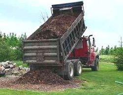 Large Commercial Dump Trucks
