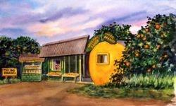 The Big Orange, Lemon Cove