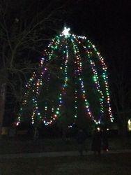 Rocheport Christmas Tree