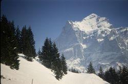 474 Wetterhorn Switzerland