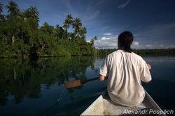 Trip to the mangroves, Nagada