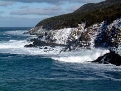 Outer Cove