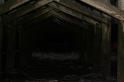 Under the Pier