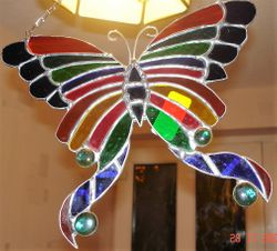 Multicoloured butterfly
