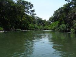 Safaris Corobici