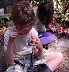 Young Geologists examine geodes