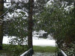 Secret Swing Garden in the snow