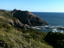 Port Orford Heads State Park