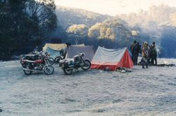 1981 Alpine Rally @ Perkins Flat - courtesy of Graeme Hind