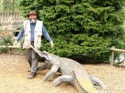 Rogue Croc!