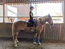 Kursmarathon bei unserer Trainerin Kerstin Knaus